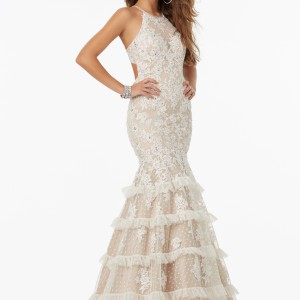 Fitted Prom Dress with Lace on Dotted Net and Delicate Beading